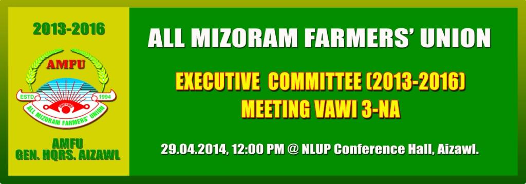 AMFU Executive Committee (2013-2016): 3rd Meeting at NLUP Conference Hall, Aizawl, on the 29.04.2014